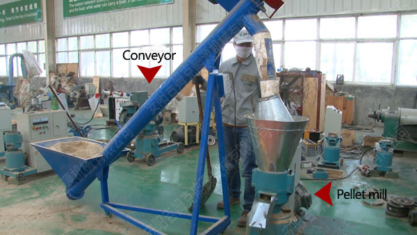 Conveyor and small pellet machine
