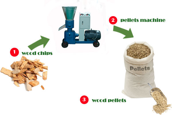 From biomass to biofuel